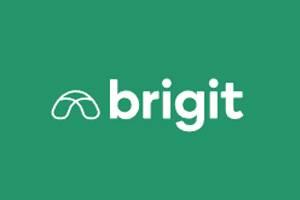 Brigit 美国专业理财APP官网